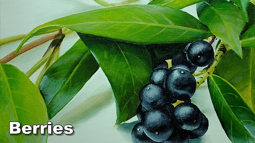 how to paint realistic berries still life