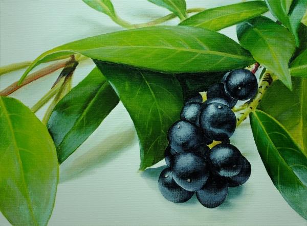 berry painting tutorial