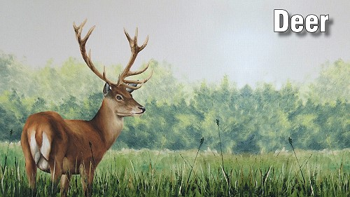 how to paint a deer in oil