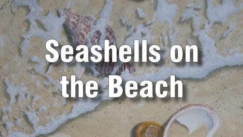 how to paint seashells beach oil