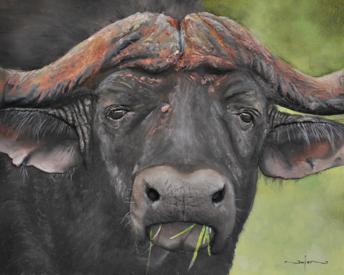 how to paint the big 5 animals - buffalo
