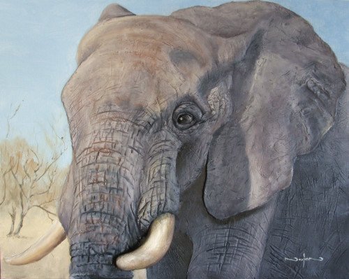 how to paint the big 5 animals - texture paste elephant