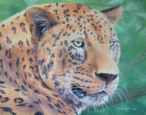 how to paint the big 5 animals - leopard