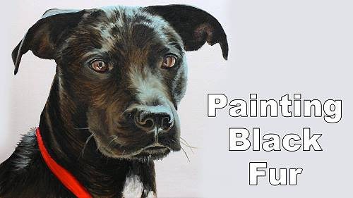 how to paint black hair dog cat fur