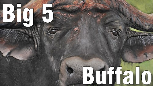 how to paint big five buffalo oil
