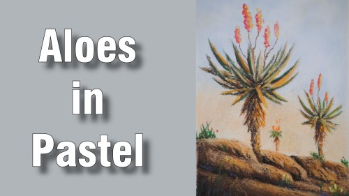 how to draw aloes pastel