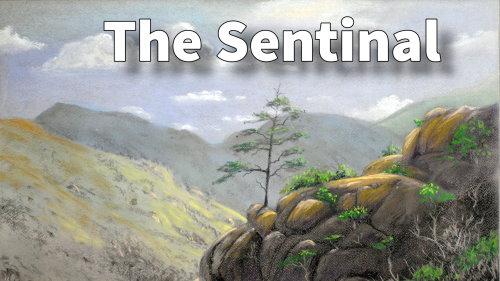 sentinal