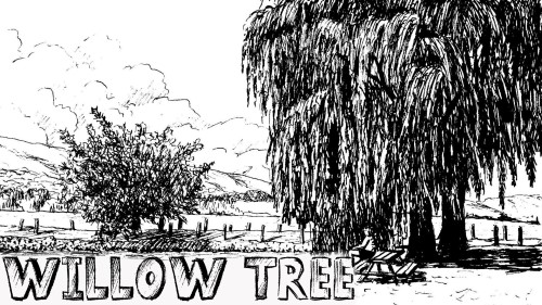 how to draw a willow tree pen and ink
