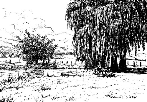 How To Draw A Willow Tree Landscape In Pen And Ink Online Art
