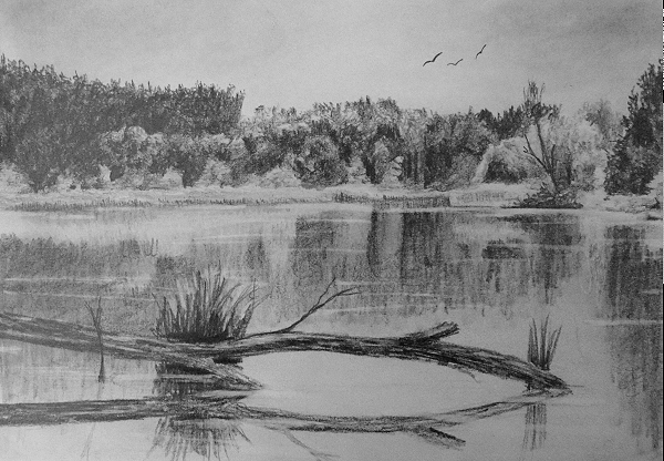 how to draw reflections in water