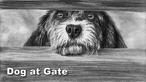 how to draw a dog at the gate