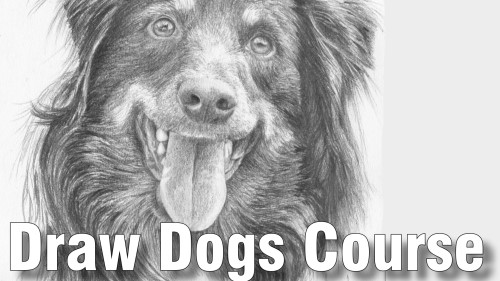 draw dogs course pencil