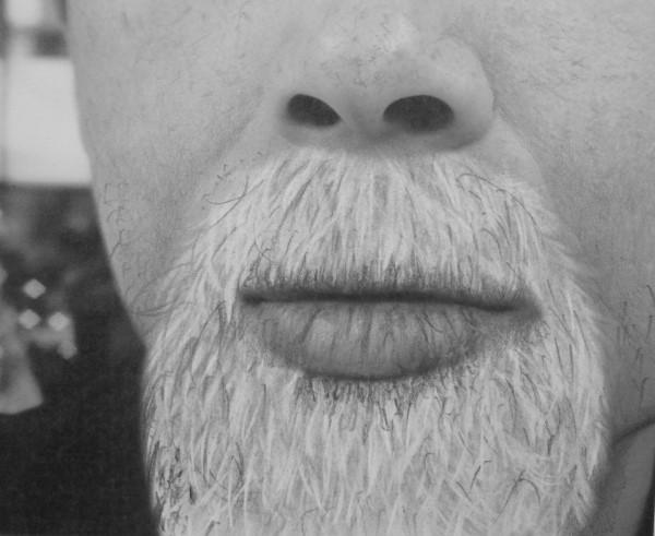 how to draw grey beards