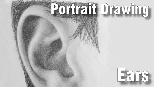 how to draw pencil portrait_ears