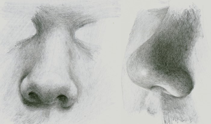 how to draw nose in pencil drawing tutorial