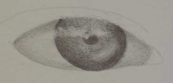 draw in the eyeball
