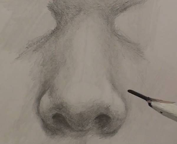 add the root of the nose