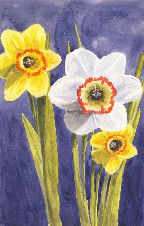 Daffodil White Paint Reviews