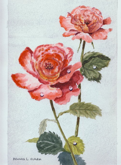 How to paint a rose in watercolour online art lessons for How to paint a rose in watercolour