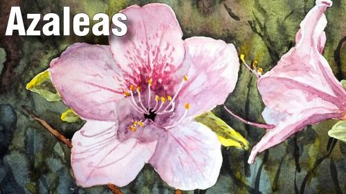 how to paint azaleas watercolour