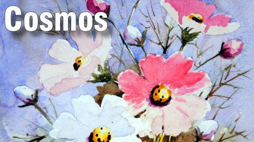how to paint cosmos watercolour