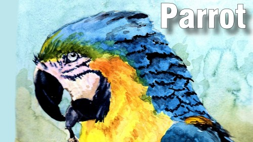 how to paint moss parrot watercolour